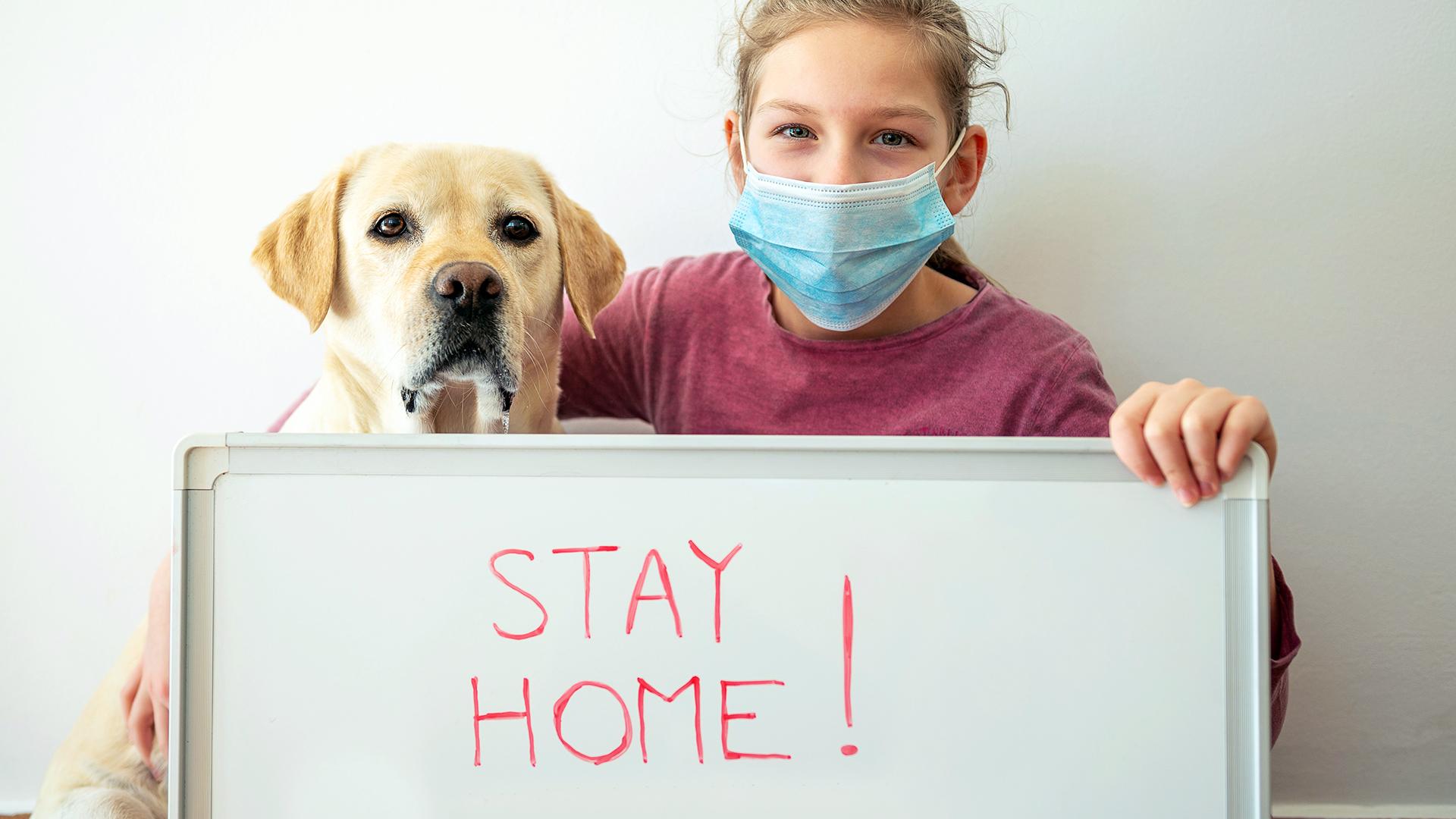 Poți să iei coronavirus de la câinele tău?